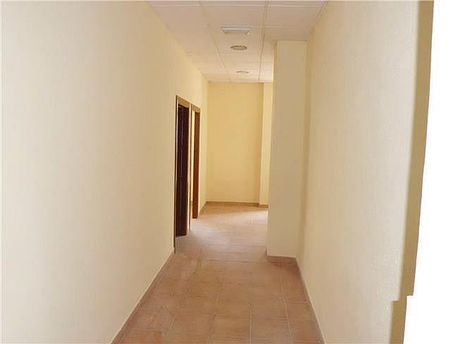 Local comercial en alquiler en Ejido (El) - 306307433