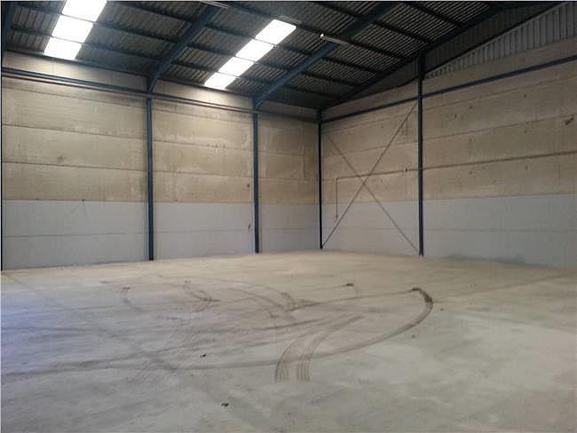 Nave industrial en alquiler en Santa Maria del Aguila - 306307670
