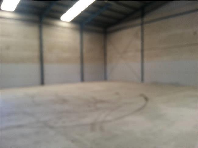 Nave industrial en alquiler en Santa Maria del Aguila - 306307676