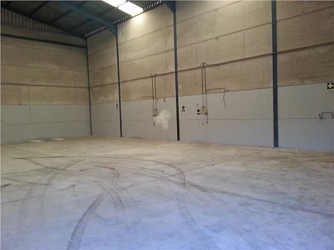 Nave industrial en alquiler en Santa Maria del Aguila - 306307679