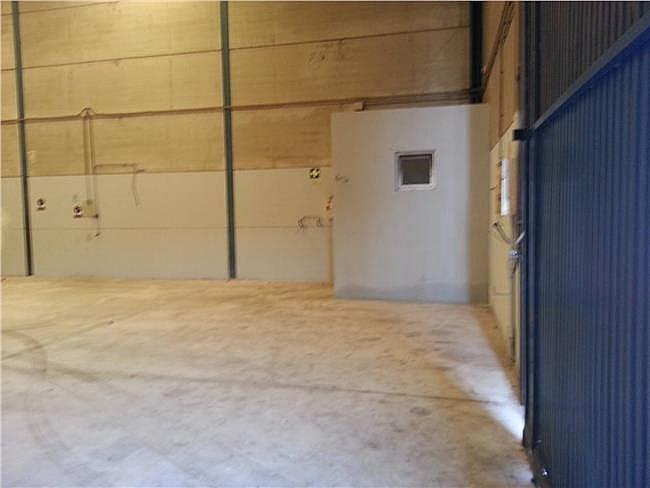 Nave industrial en alquiler en Santa Maria del Aguila - 306307682