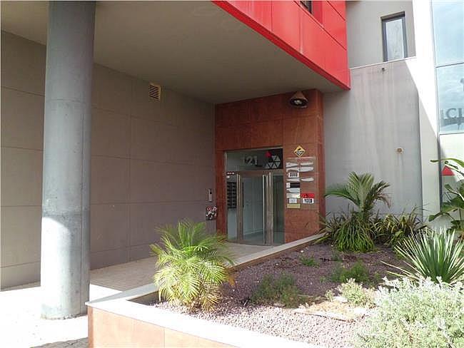 Oficina en alquiler en Ejido (El) - 306310784