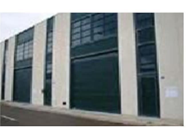 Nave industrial en alquiler en Mojonera (La) - 306331586
