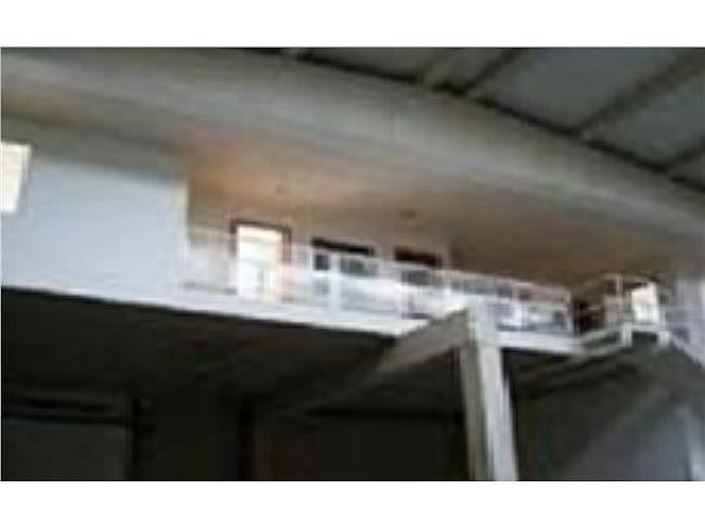 Nave industrial en alquiler en Mojonera (La) - 306331601