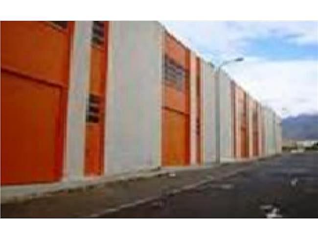 Nave industrial en alquiler en Mojonera (La) - 306331634