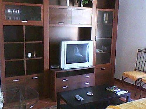 Apartamento en alquiler en calle Larga, Aldeaseca de la armuÑa - 328823715