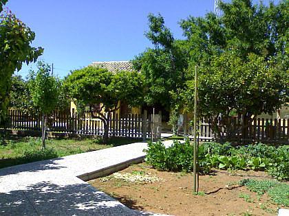 FACHADA - Chalet en alquiler en Chipiona - 241177168
