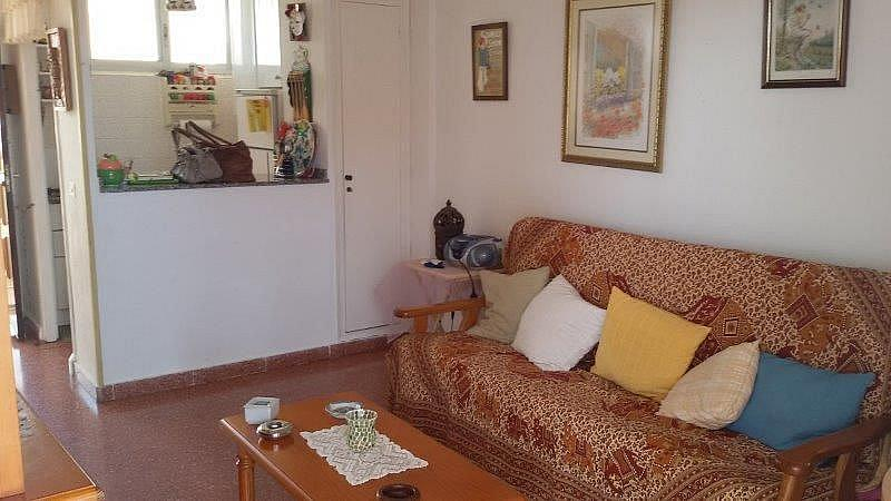 Imagen sin descripción - Piso en alquiler en Playa Mucha Vista en Campello (el) - 315440724