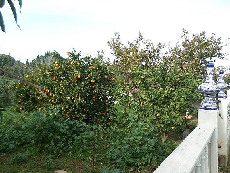Foto - Chalet en alquiler en calle Alhaurín de la Torre, Alhaurín de la Torre - 330631494