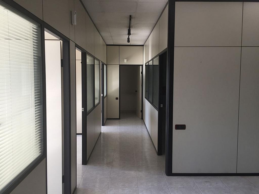 Oficina - Nave industrial en alquiler en calle Marina, Camps Blancs en Sant Boi de Llobregat - 327562197