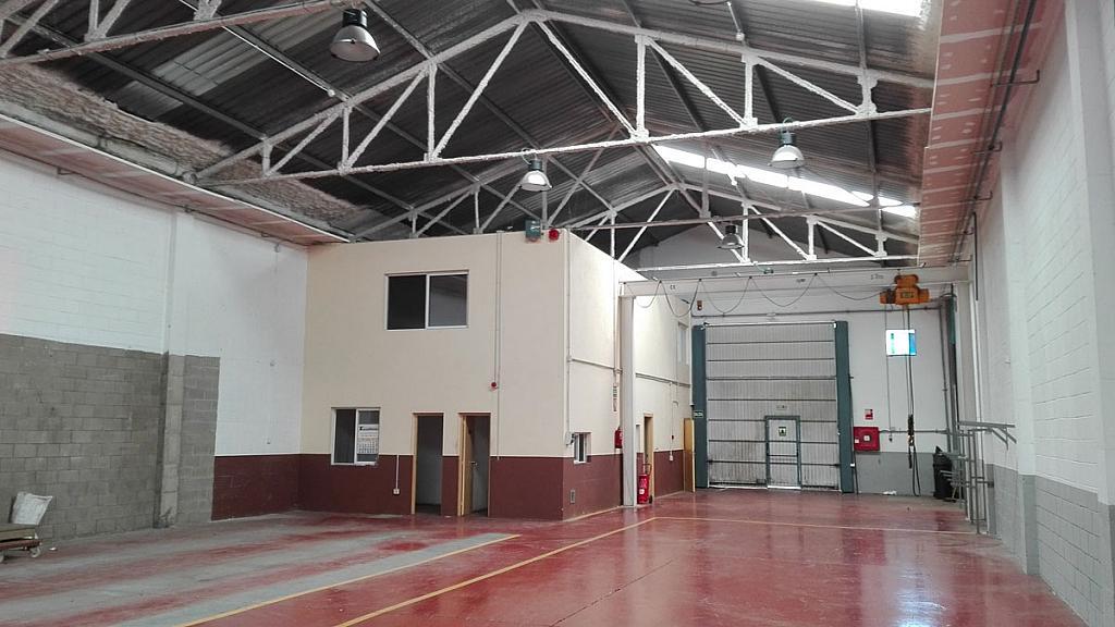 Planta baja - Nave industrial en alquiler en polígono Can Calderón, Camps Blancs en Sant Boi de Llobregat - 328019640