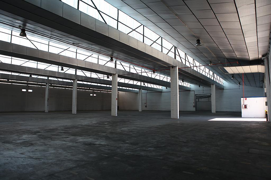 Planta baja - Nave industrial en alquiler en calle Sierra Morena, Parque Henares en San Fernando de Henares - 269727868