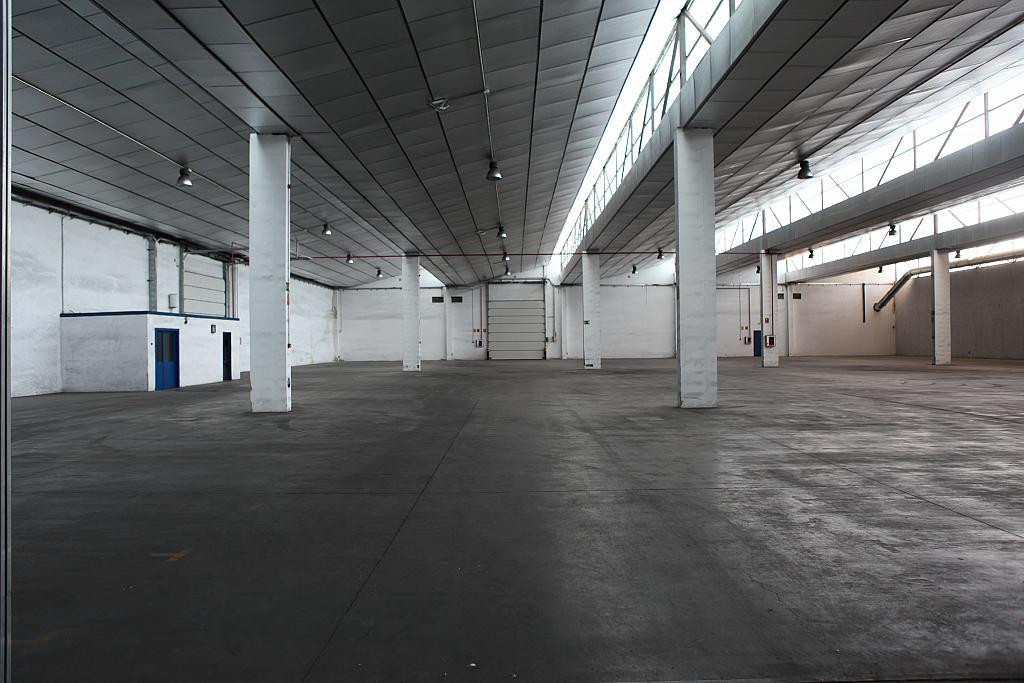Planta baja - Nave industrial en alquiler en calle Sierra Morena, Parque Henares en San Fernando de Henares - 269727884