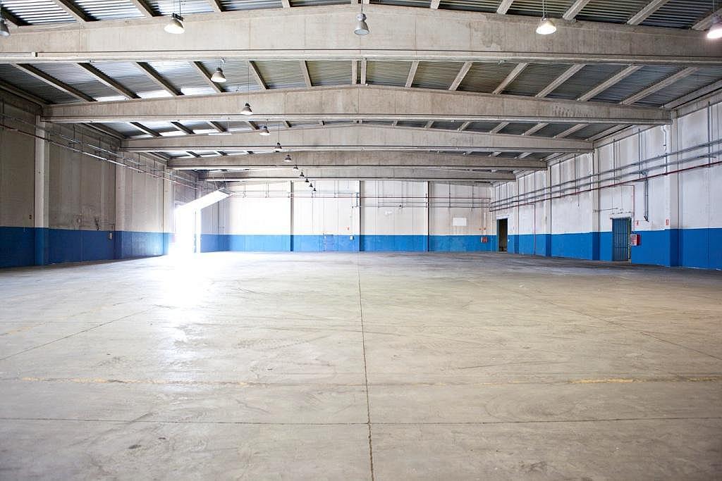 Planta baja - Nave industrial en alquiler en calle Sierra Morena, Parque Henares en San Fernando de Henares - 269727992
