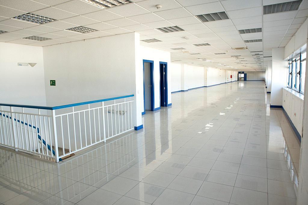 Oficina - Nave industrial en alquiler en calle Sierra Morena, Parque Henares en San Fernando de Henares - 269728003
