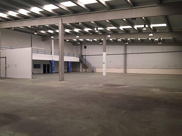 Planta baja - Nave industrial en alquiler en calle Federico Chueca, Garena en Alcalá de Henares - 291042580