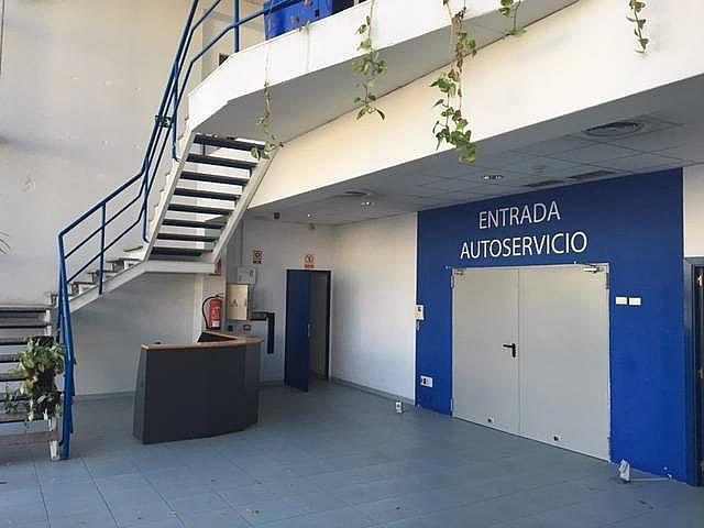 Detalles - Nave industrial en alquiler en calle Federico Chueca, Garena en Alcalá de Henares - 291042589