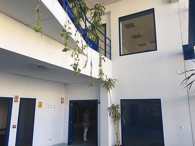 Detalles - Nave industrial en alquiler en calle Federico Chueca, Garena en Alcalá de Henares - 291042590