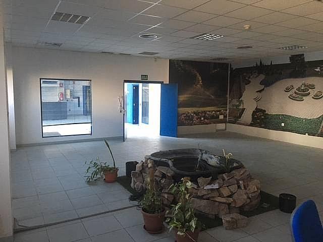 Oficina - Nave industrial en alquiler en calle Federico Chueca, Garena en Alcalá de Henares - 291042592