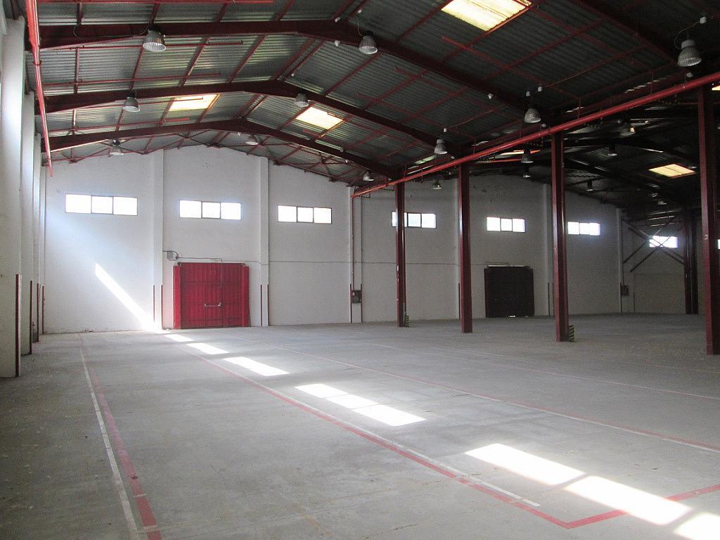 Planta baja - Nave industrial en alquiler en calle Bell, Centro en Getafe - 323902742
