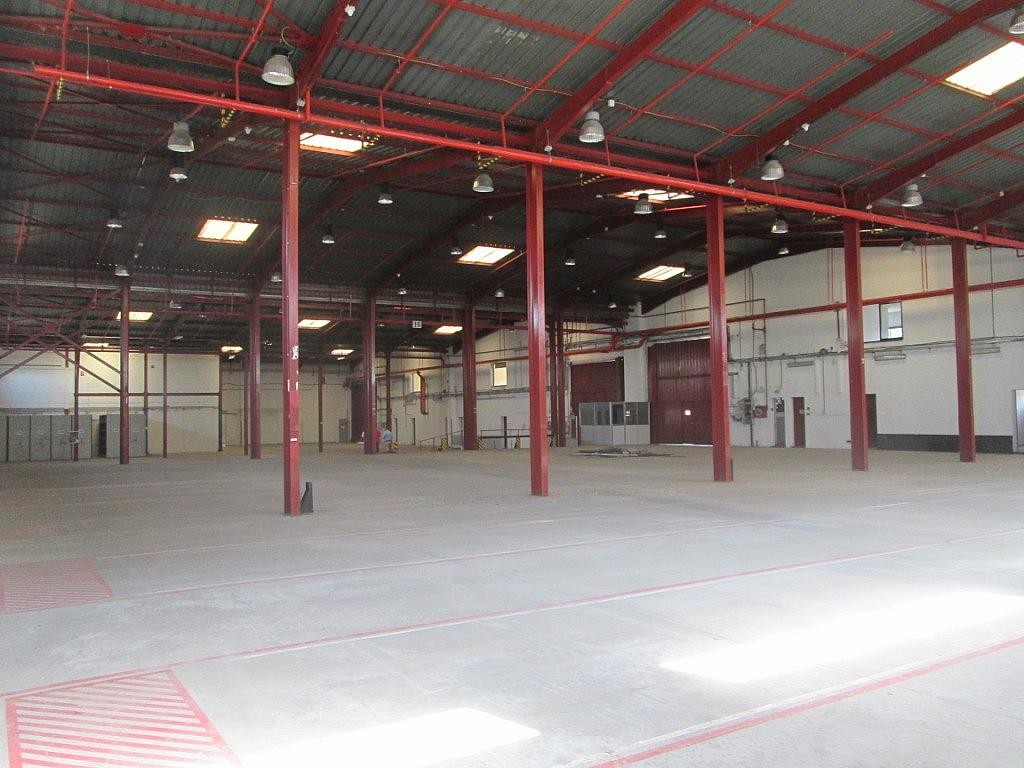 Planta baja - Nave industrial en alquiler en calle Bell, Centro en Getafe - 323902747