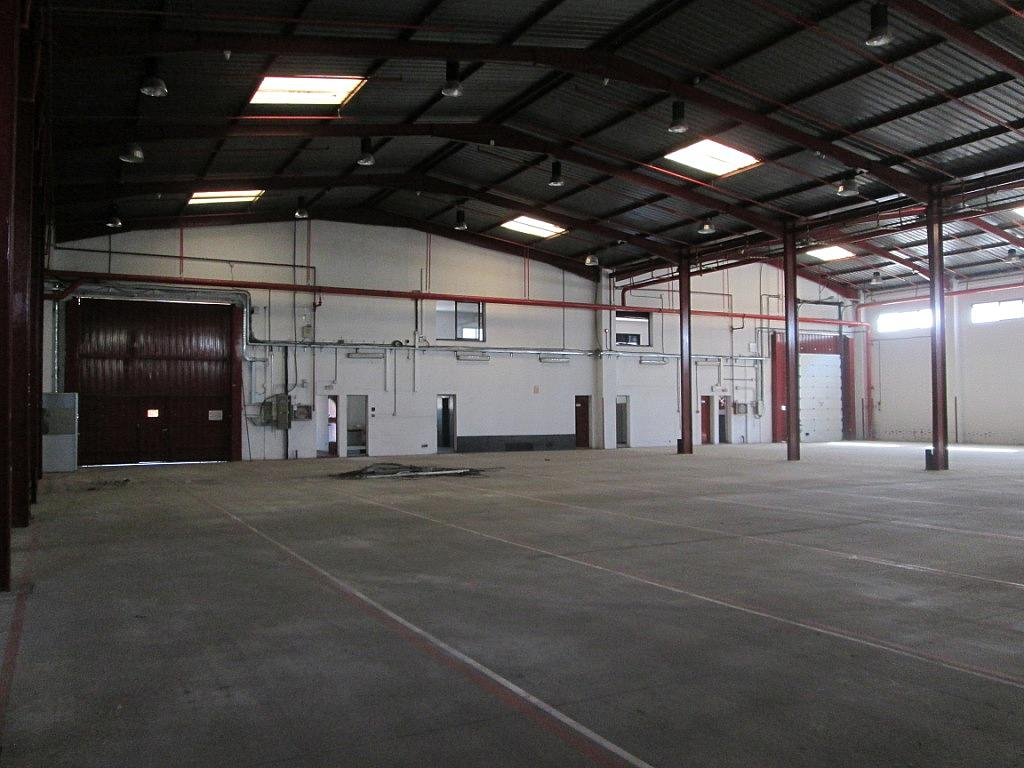 Planta baja - Nave industrial en alquiler en calle Bell, Centro en Getafe - 323902749