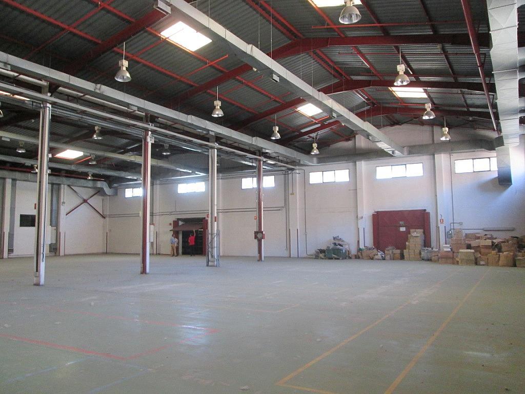 Planta baja - Nave industrial en alquiler en calle Bell, Centro en Getafe - 323902762