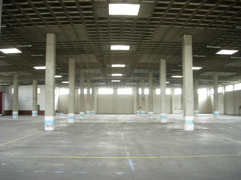 Planta baja - Nave industrial en alquiler en calle Del Olivar, Valdemoro - 137941209