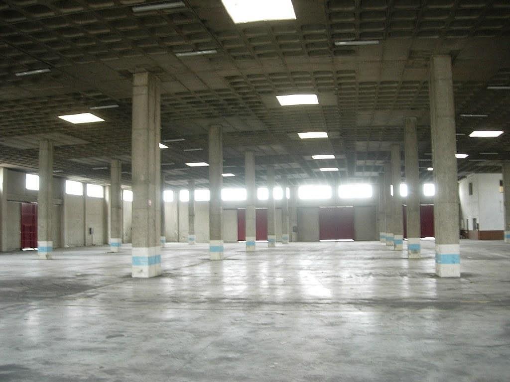 Planta baja - Nave industrial en alquiler en calle Del Olivar, Valdemoro - 137941217