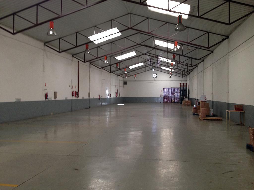 Planta baja - Nave industrial en alquiler en calle De Rey Pastor, Leganés - 138306003
