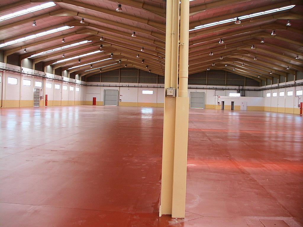 Planta baja - Nave industrial en alquiler en calle Sierra de Gredos, Arganda del Rey - 166532422