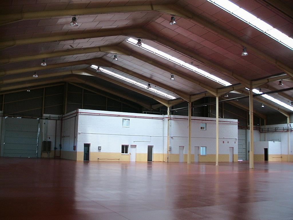 Planta baja - Nave industrial en alquiler en calle Sierra de Gredos, Arganda del Rey - 166532454