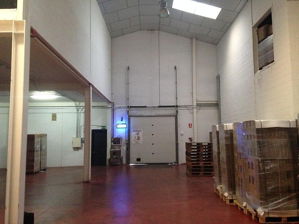 Planta baja - Nave industrial en alquiler en calle Del Encinar, Casarrubios del Monte - 172669668