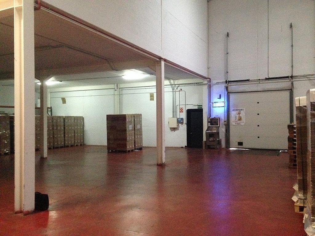 Planta baja - Nave industrial en alquiler en calle Del Encinar, Casarrubios del Monte - 172669671