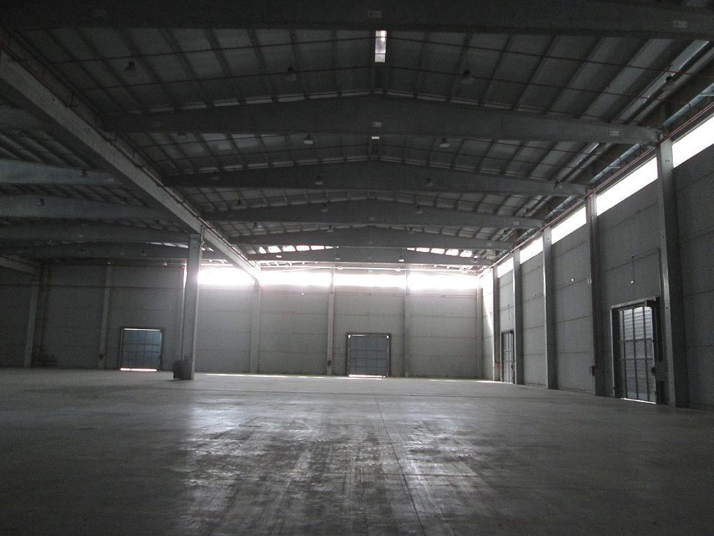 Planta baja - Nave industrial en alquiler en calle De Las Marismas, Getafe - 186894508