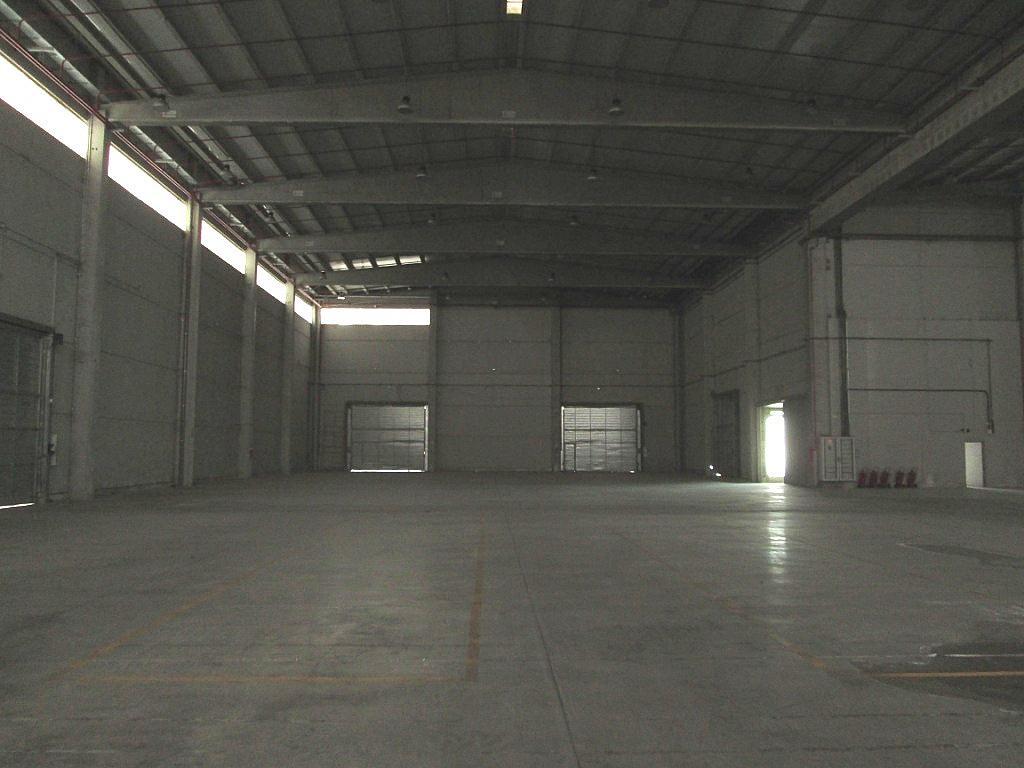 Planta baja - Nave industrial en alquiler en calle De Las Marismas, Getafe - 186894545