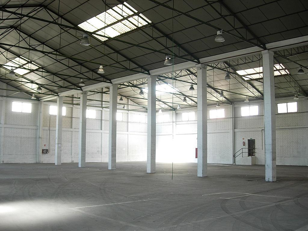 Planta baja - Nave industrial en alquiler en calle Rey Pastor, Zona Centro en Leganés - 200882577
