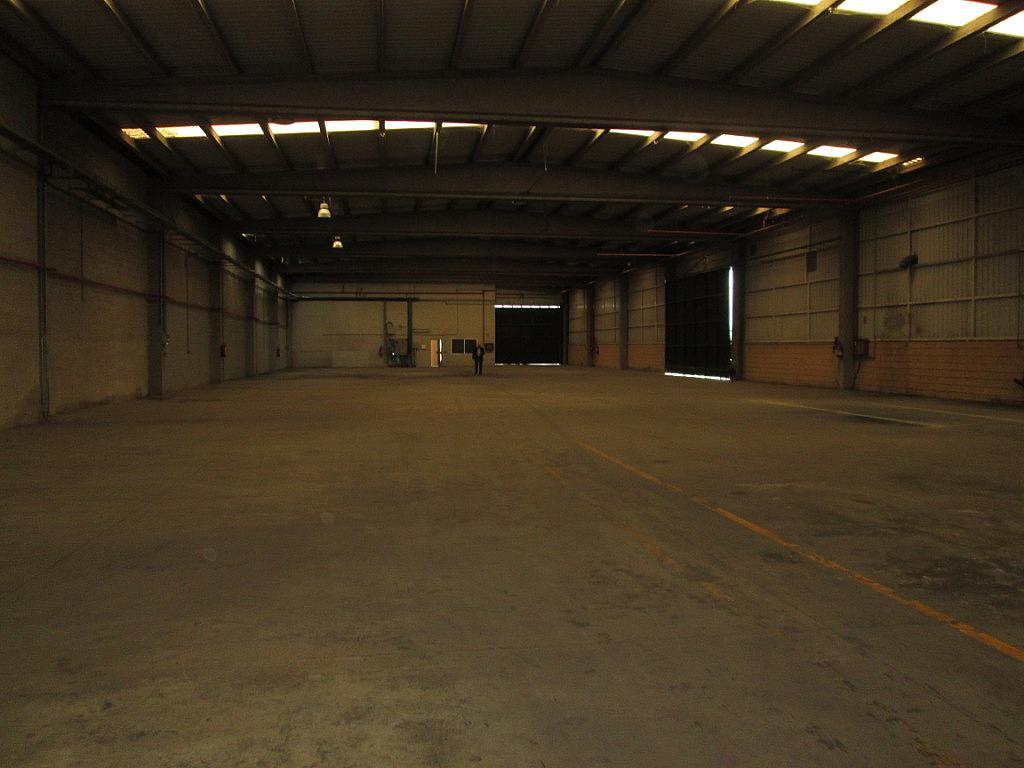 Planta baja - Nave industrial en alquiler en calle Del Molino, Meco - 202709820