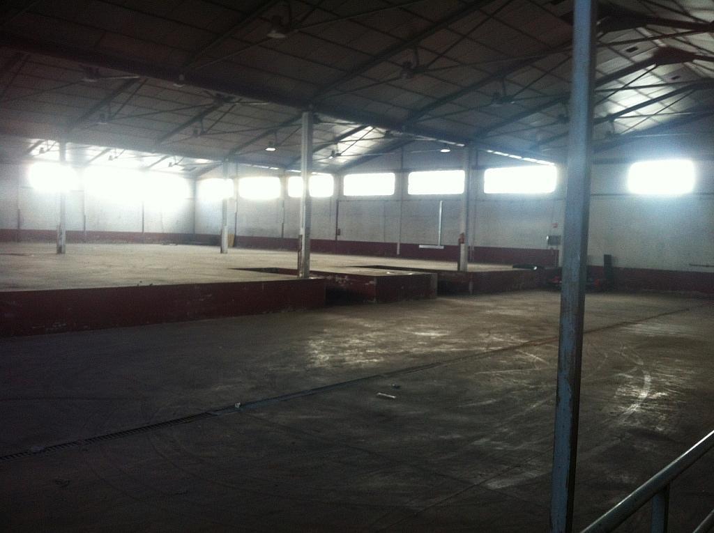Planta baja - Nave industrial en alquiler en calle Puerto de Cotos, Sur-Este en Móstoles - 228797391