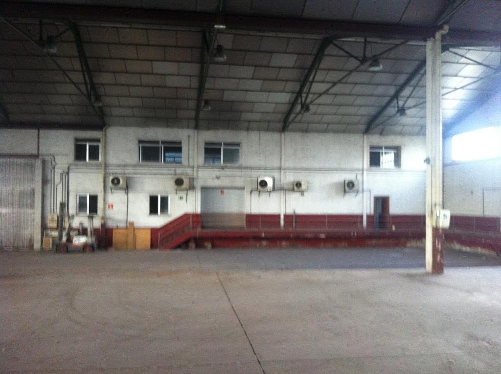 Planta baja - Nave industrial en alquiler en calle Puerto de Cotos, Sur-Este en Móstoles - 228797394