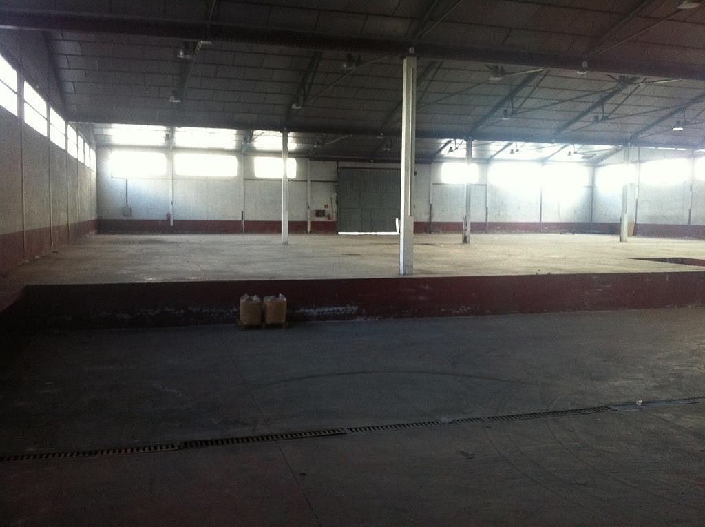 Planta baja - Nave industrial en alquiler en calle Puerto de Cotos, Sur-Este en Móstoles - 228797397
