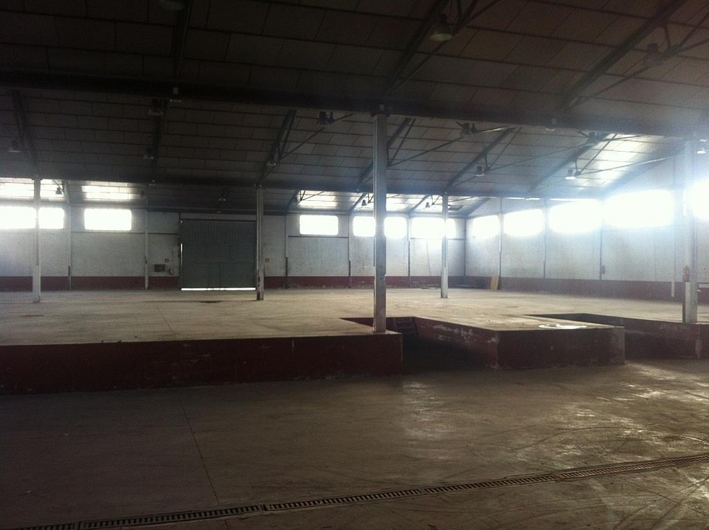 Planta baja - Nave industrial en alquiler en calle Puerto de Cotos, Sur-Este en Móstoles - 228797398