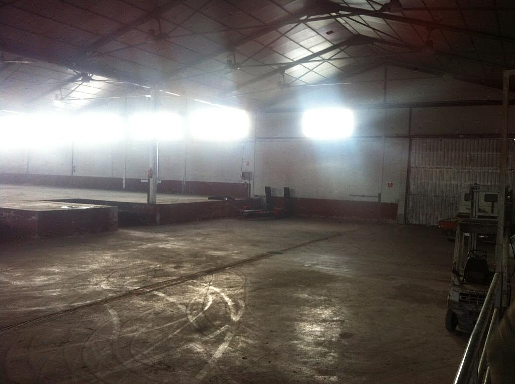 Planta baja - Nave industrial en alquiler en calle Puerto de Cotos, Sur-Este en Móstoles - 228797399