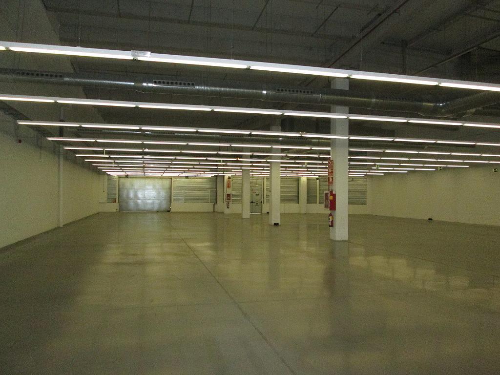 Planta baja - Local comercial en alquiler en calle Iridio, Illescas - 230053487