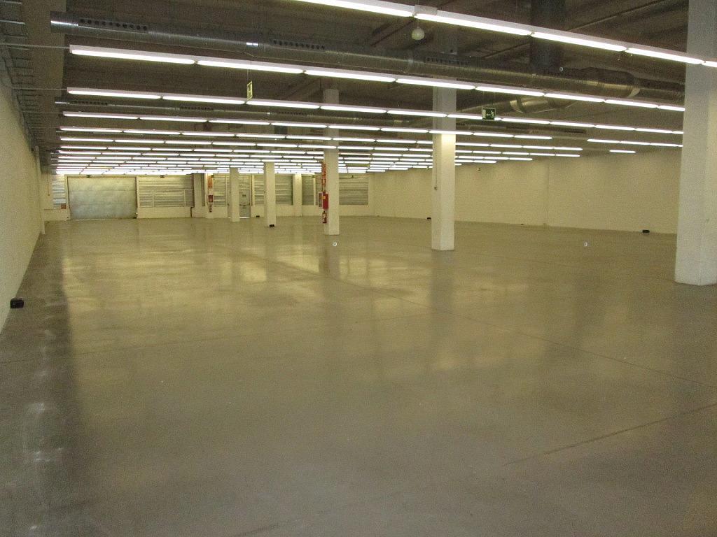 Planta baja - Local comercial en alquiler en calle Iridio, Illescas - 230053495