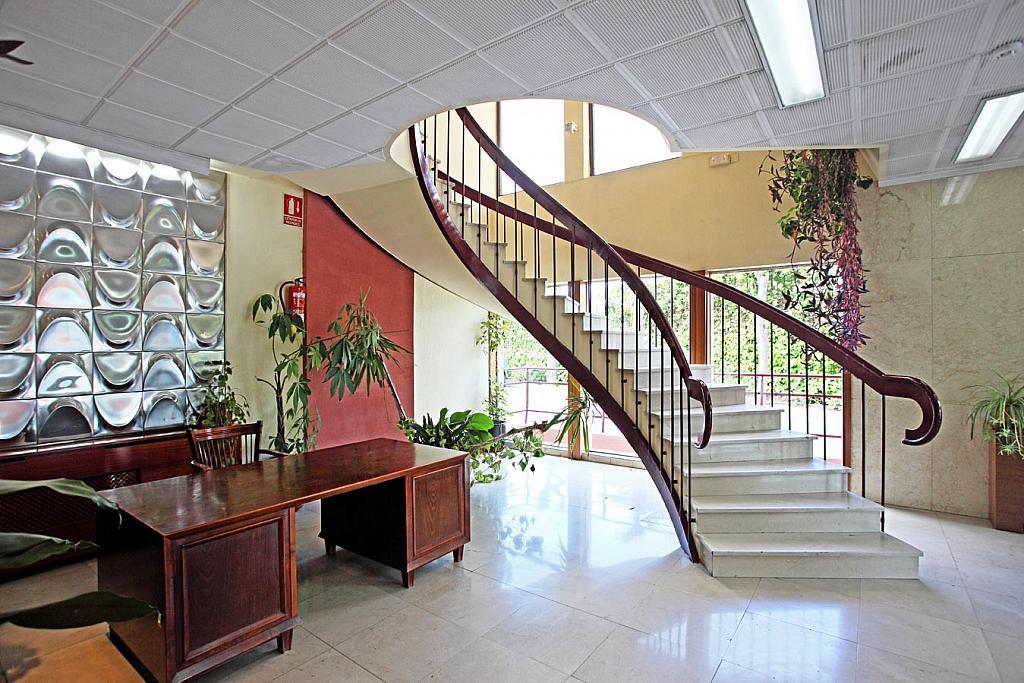Oficina en alquiler en calle Arboleda, Ensanche de Vallecas en Madrid - 251586743