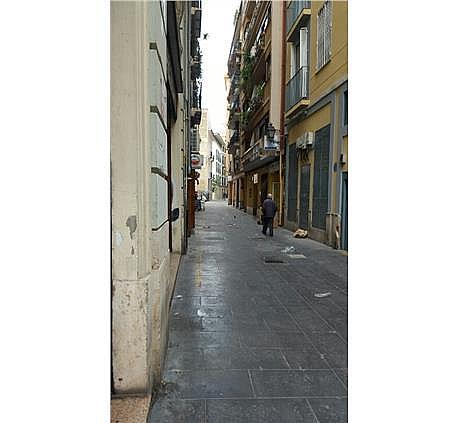Piso en alquiler en El Mercat en Valencia - 240660348