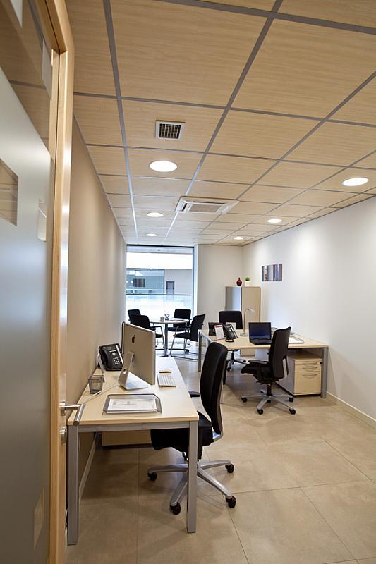 Oficina en alquiler en plaza De la Solidaridad, El Cónsul-Ciudad Universitaria en Málaga - 142373704