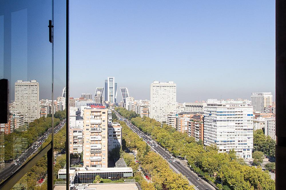 Oficina en alquiler en paseo De Castellana, Castellana en Madrid - 142805400