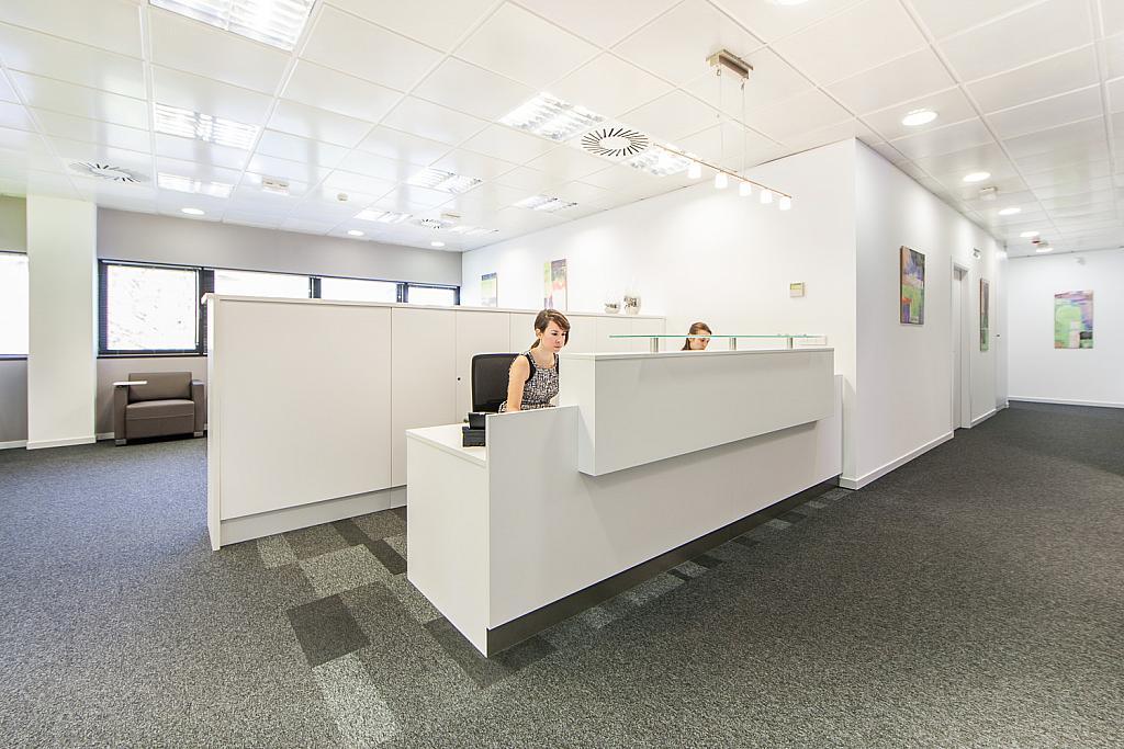 Oficina en alquiler en calle Gabriel García Marquez, El Cantizal en Rozas de Madrid (Las) - 170876573